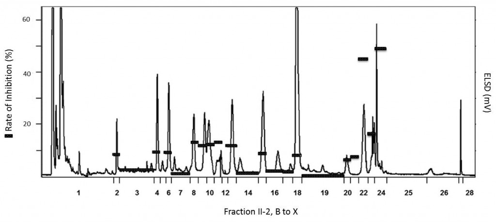 Fig 4. Inhibition of hSGLT1 transport currents which were induced by α‐methylglucose (1 mM) in the presence of individual HPLC fractions in natural concentration ratios prepared from Gymnema sylvestre fraction II‐2.